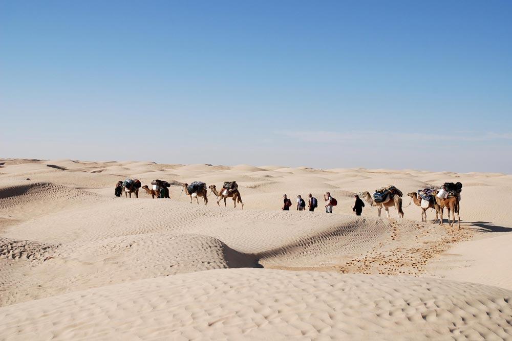 le desert tunisien bassdef au dela du regard
